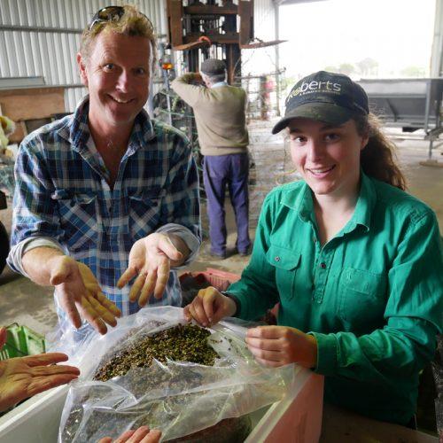 Melshell Oyster Shack Farm Family Seafood Tasmania Aquaculture